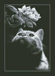Схема Кот с магнолией