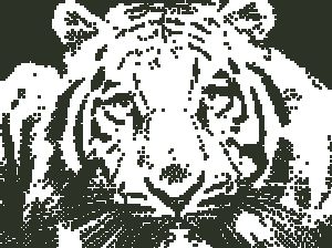 Схема Тигр контур