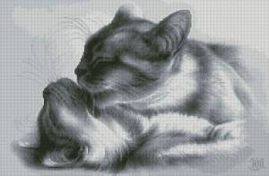 Схема Кошачьи нежности