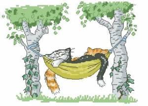 Схема Кот в гамаке