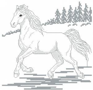 Схема Дикий конь