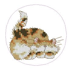 Схема Котик-шалун