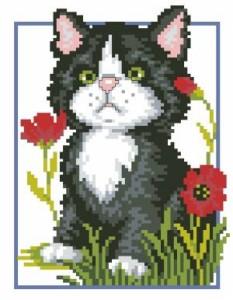 Схема Котёнок в маках