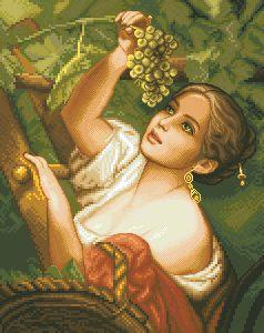 Схема Виноградница
