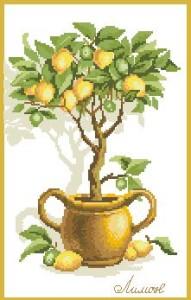 Схема Лимонное дерево