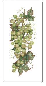 Схема Белый виноград