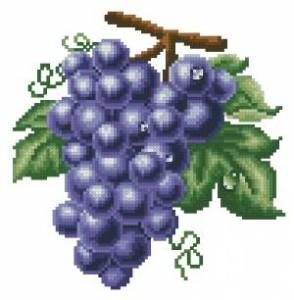 Схема Виноград фиолетовый