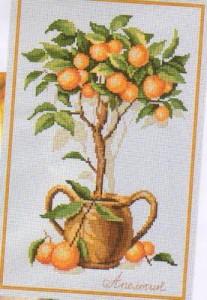 Схема Апельсиновое дерево