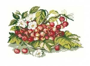 Схема Натюрморт с вишнями