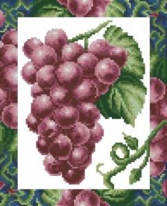 Схема Красный виноград в рамке