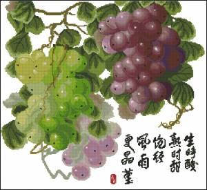 Схема Разноцветный виноград