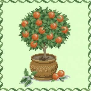 Схема Маленькое дерево АПЕЛЬСИН