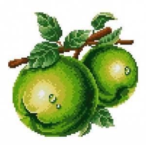 Схема Зеленое яблоко (с росой)