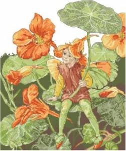 Схема Фея / Nasturtium Fairy