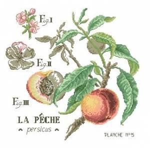 Схема Веточка персика