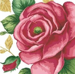 Схема Большая розовая роза