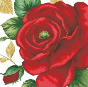 Схема Большая красная роза
