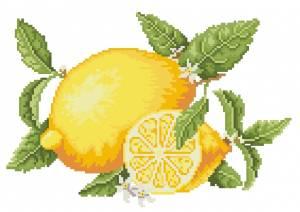 Схема Лимоны