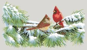 Схема Зимние кардиналы
