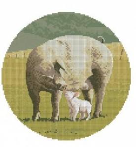 Схема Семья свиньи