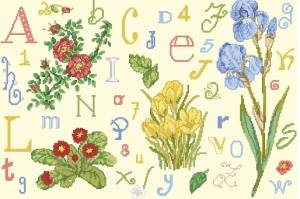 Схема Алфавит и цветы