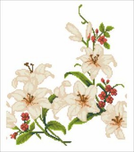 Схема Цвіт лілій (Чернігівщина)