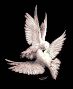 Схема Мой голубь / My pigeon