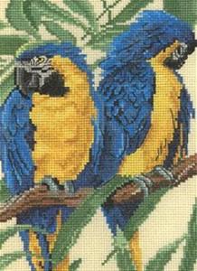 Бесплатно схемы вышивки попугаев