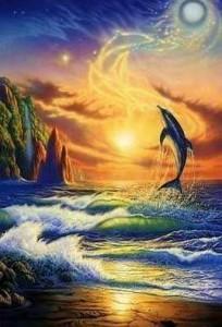 Схема Мечта дельфинов