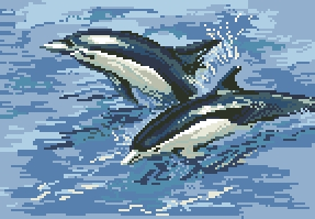 Схема Море. Дельфины
