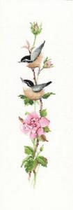 Схема Сонатина роза / Sonatina Rose