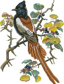 Схема Птица на ягодной ветке