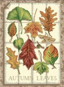 Схема Осенние листья