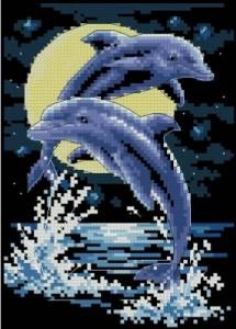 Схема Дельфины при луне