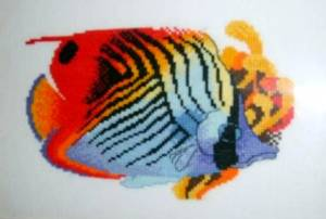 Схема Цветная рыбка