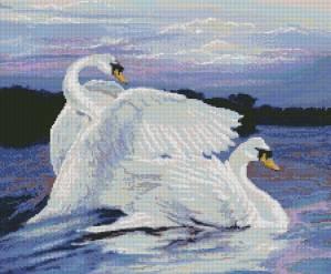 Схема Пара лебедей