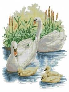 Схема Лебединое семейство