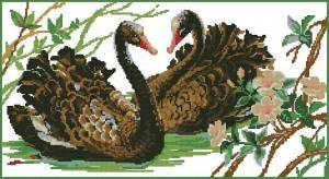 Схема Пара черных лебедей