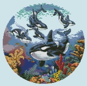 Схема Круг китов