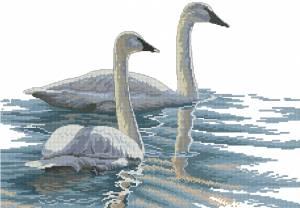 Схема Изящные лебеди