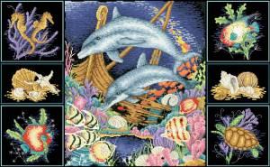 Схема Чудеса риф / Wonders of the reef