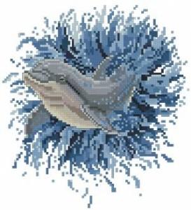 Схема Афалина / Bottlenose Dolphin