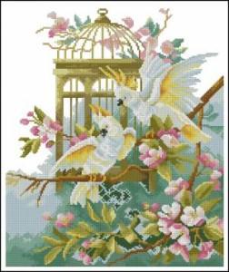 Схема Белые попугаи