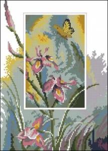 Схема Ирисы и бабочка