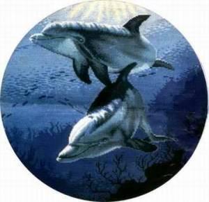 Схема Дельфины (пара)
