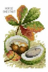 Схема Конский каштан / Horse Shestnut