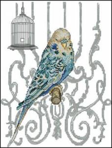 Схема Птица в клетке  / Bird in Cage