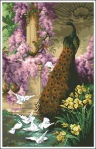 Схема Павлин в саду