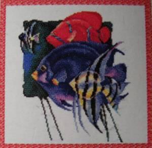 Схема Стайка цветных рыбкок