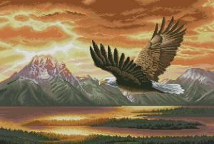 Схема Орел
